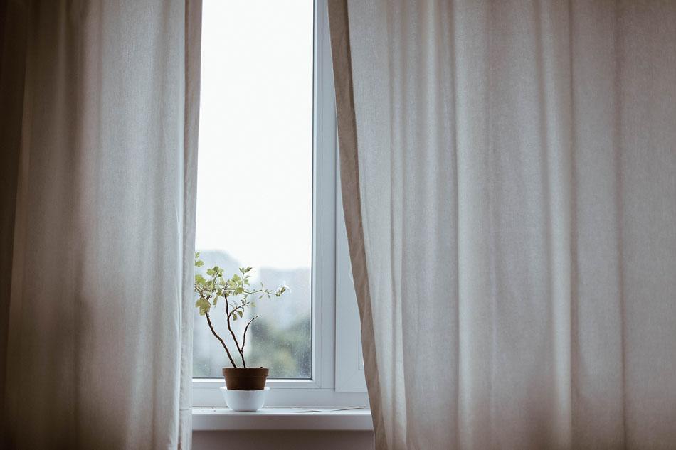 des plantes d int rieur avec un entretien facile faire. Black Bedroom Furniture Sets. Home Design Ideas